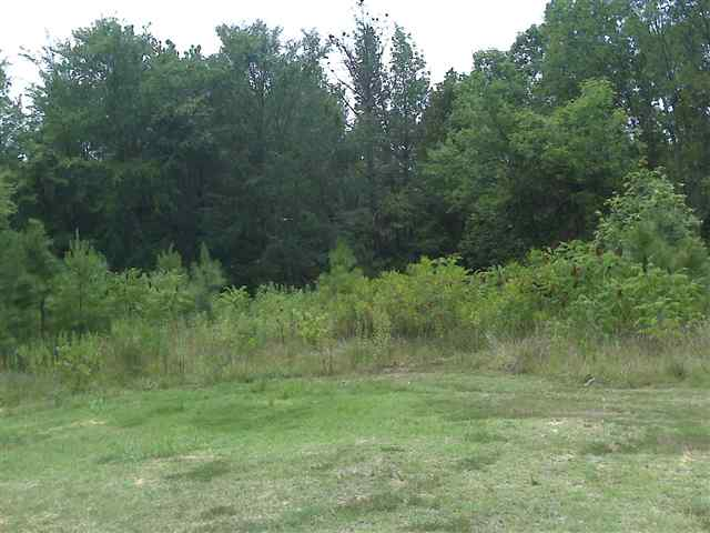 Residential Lot - Hickory Grove, SC (photo 2)