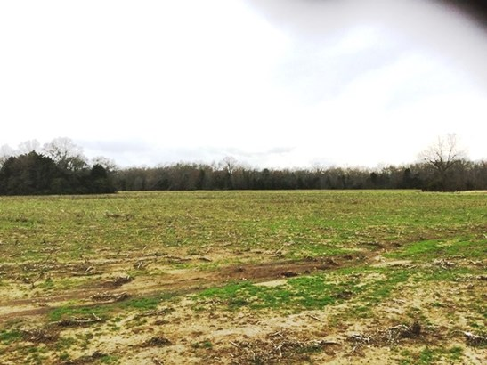 Over 10 Acres - Rock Hill, SC (photo 4)