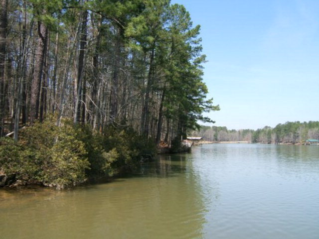 Residential/Subdivision Lot - Chappells, SC (photo 1)