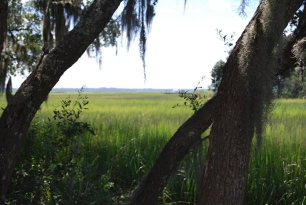 0 Midge, Wadmalaw Island, SC - USA (photo 5)