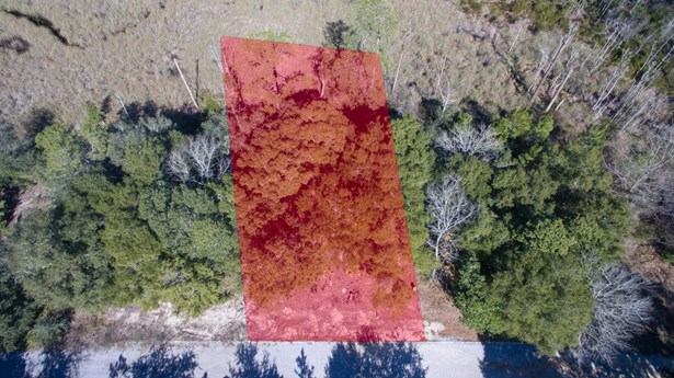 Vacant Land - Seacrest, FL (photo 3)