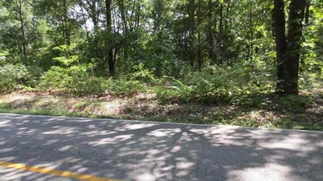 Lot 4 Mccord Bend Road, Galena, MO - USA (photo 4)