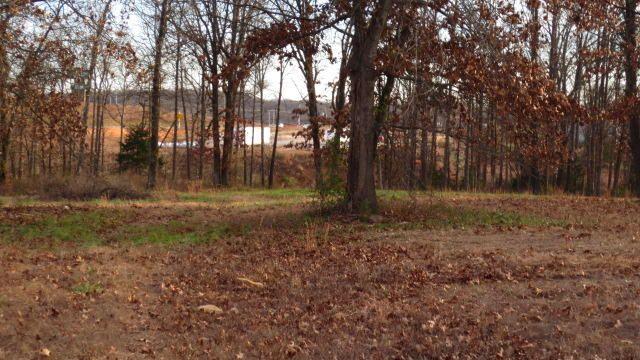 Lot B & C Woodfield Drive, Highlandville, MO - USA (photo 5)