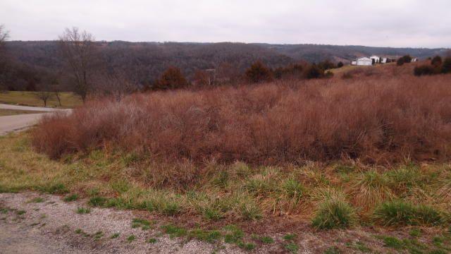 0 Hilltop Vista, Branson, MO - USA (photo 2)