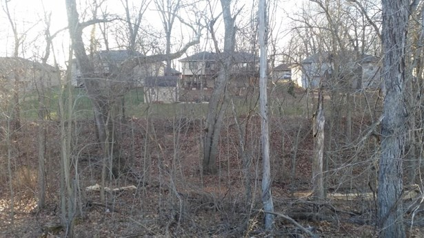 Lot 186 South Cloverdale Lane, Battlefield, MO - USA (photo 1)