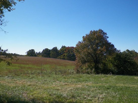 4645 North Farm Road 165, Springfield, MO - USA (photo 5)