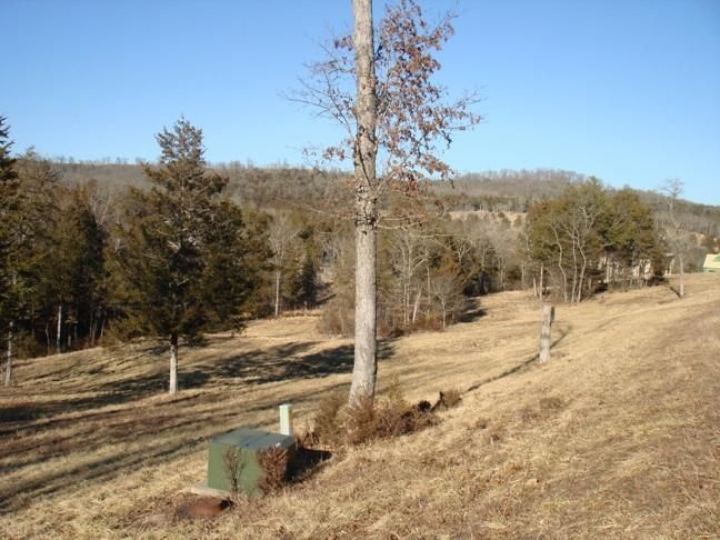 109 Appaloosa Trail, Saddlebrooke, MO - USA (photo 4)