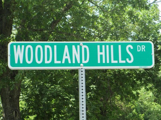 194 Woodland Hills Drive, Walnut Shade, MO - USA (photo 1)