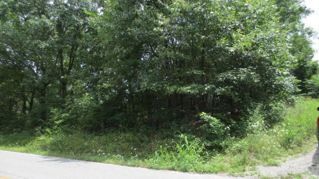 Lot 24/25 Highway Dd, Branson West, MO - USA (photo 3)