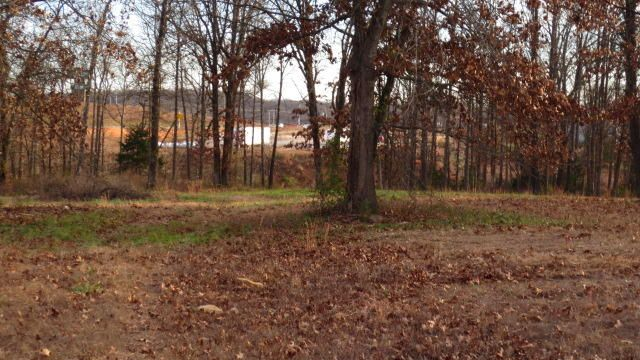 Lot B Woodfield Drive, Highlandville, MO - USA (photo 5)
