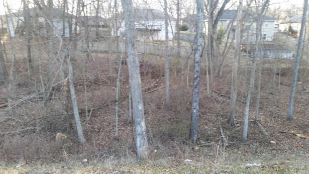 Lot 184 South Cloverdale Lane, Battlefield, MO - USA (photo 1)