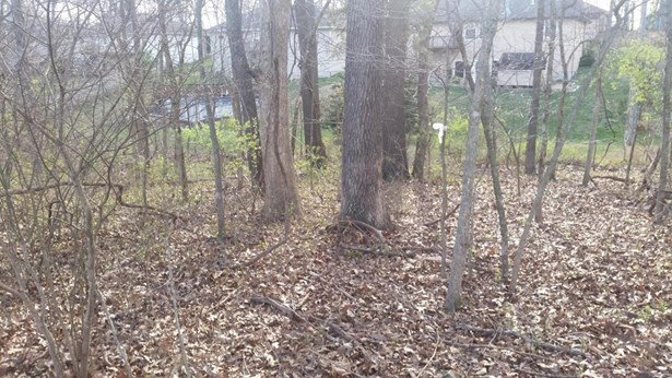 Lot 182 South Cloverdale Lane, Battlefield, MO - USA (photo 2)