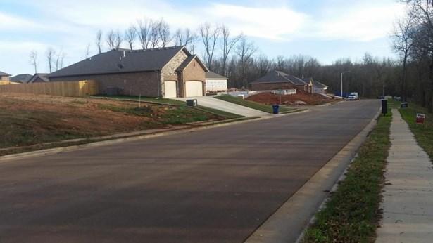 Lot 182 South Cloverdale Lane, Battlefield, MO - USA (photo 3)