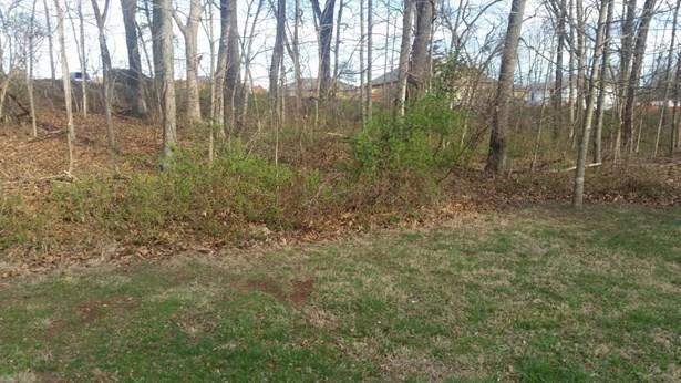 Lot 182 South Cloverdale Lane, Battlefield, MO - USA (photo 4)