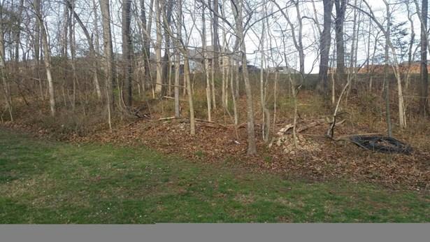 Lot 182 South Cloverdale Lane, Battlefield, MO - USA (photo 5)