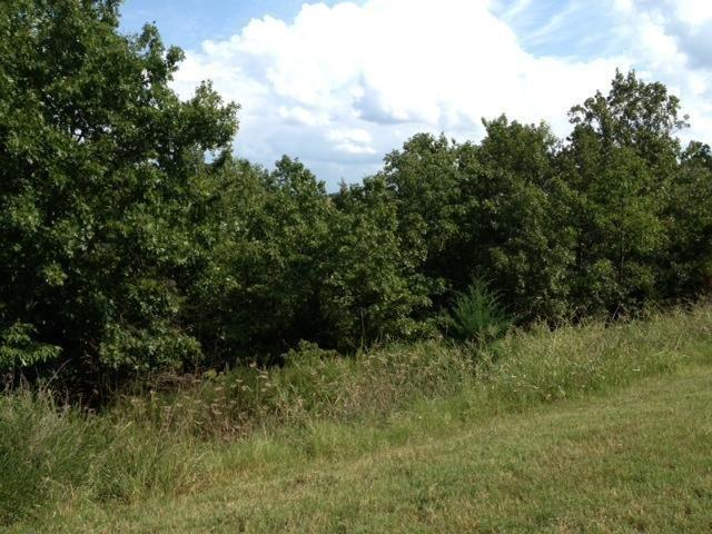 140 Forest Oak Drive 2, Hollister, MO - USA (photo 2)