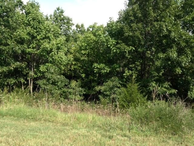 140 Forest Oak Drive 2, Hollister, MO - USA (photo 5)