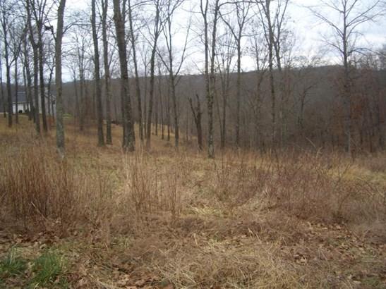 Lot 6 Woods Fork Ridge, Highlandville, MO - USA (photo 1)
