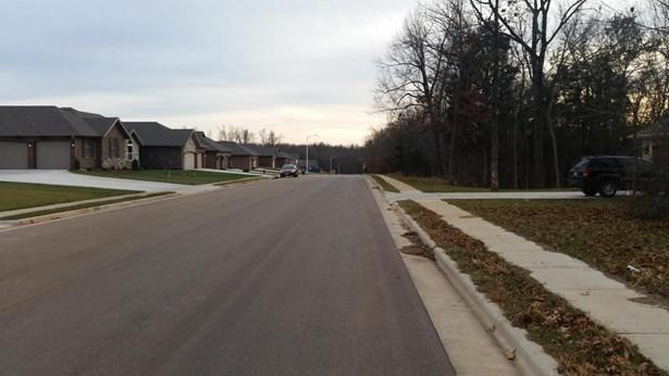 Lot 388 South Cloverdale Lane, Battlefield, MO - USA (photo 2)