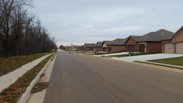 Lot 388 South Cloverdale Lane, Battlefield, MO - USA (photo 3)