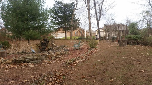 Lot 388 South Cloverdale Lane, Battlefield, MO - USA (photo 4)