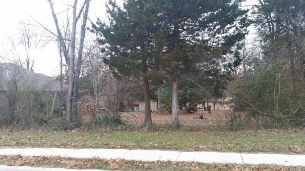 Lot 388 South Cloverdale Lane, Battlefield, MO - USA (photo 5)
