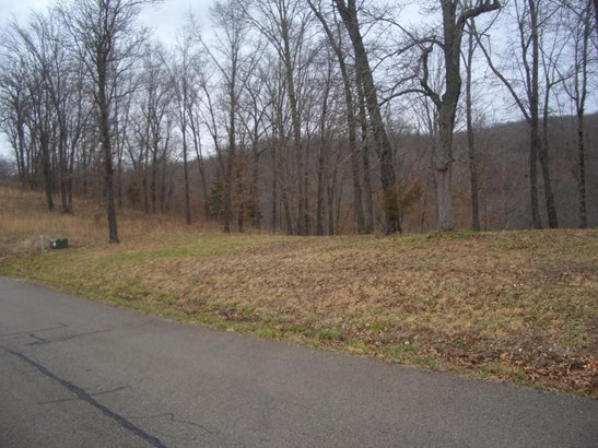 Lot 12 Woods Ridge Drive, Highlandville, MO - USA (photo 1)