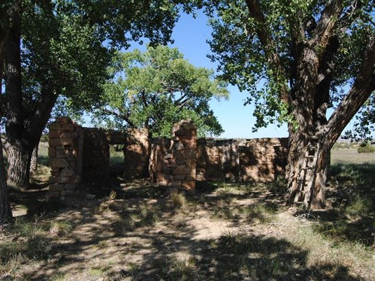 Residential Lot - Cerrillos, NM (photo 4)