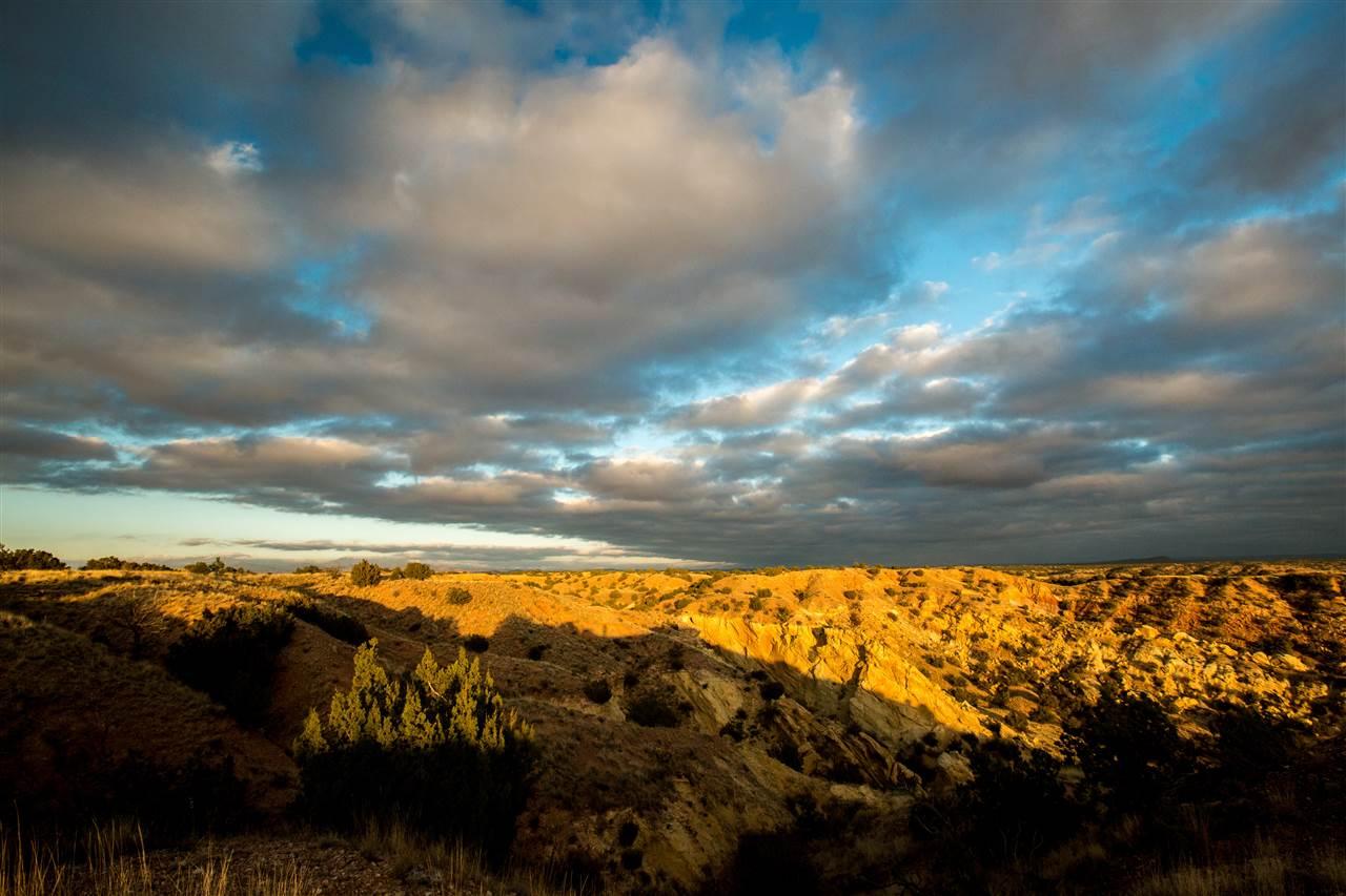 Ranch, Pleasure - Santa Fe, NM (photo 4)