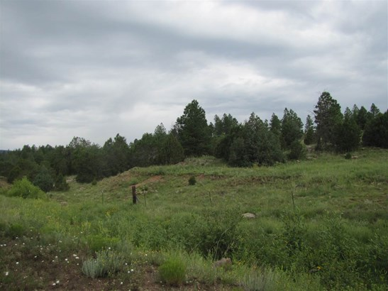 Undeveloped - San Geronimo, NM (photo 3)