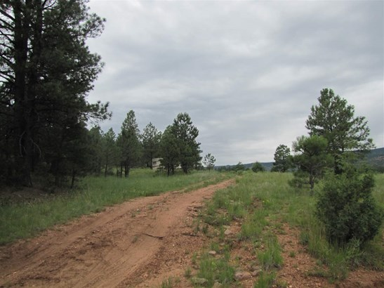 Undeveloped - San Geronimo, NM (photo 5)