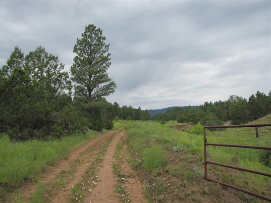 Residential Lot - San Geronimo, NM (photo 1)