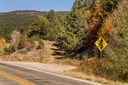 Residential Lot - Pecos, NM (photo 1)