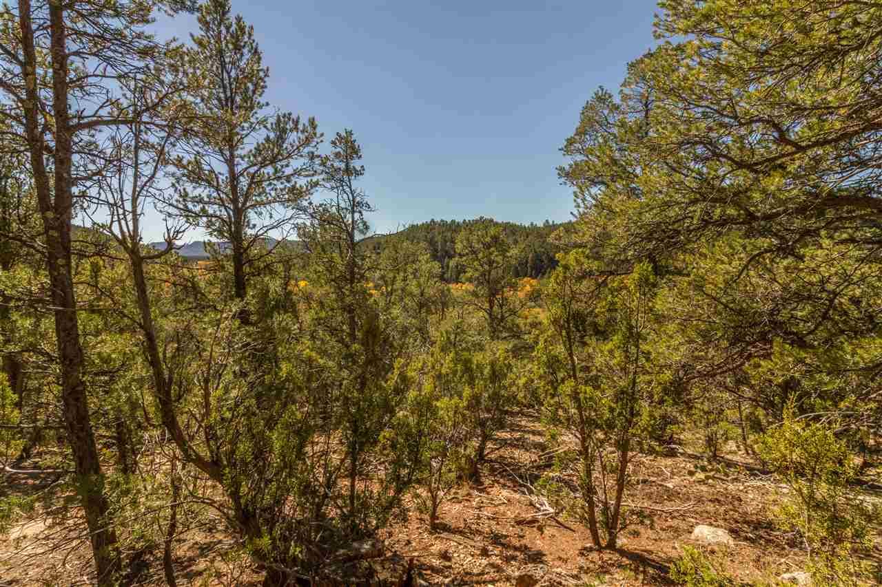 Residential Lot - Pecos, NM (photo 5)