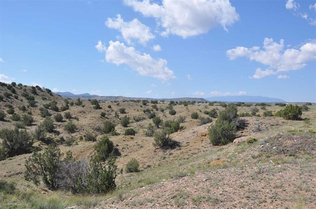 Undeveloped - Cerrillos, NM (photo 4)