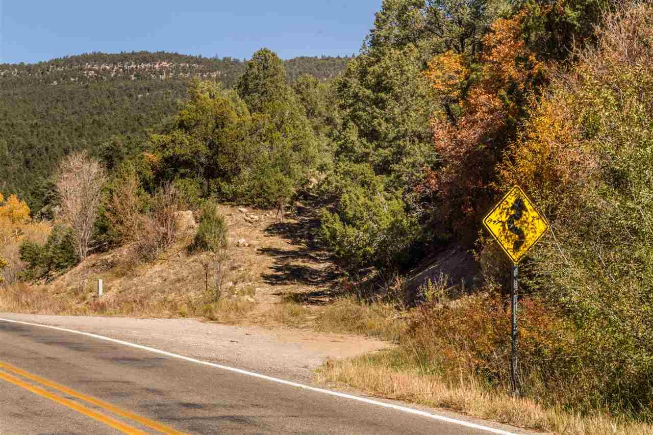 Ranch, Pleasure - Pecos, NM (photo 3)