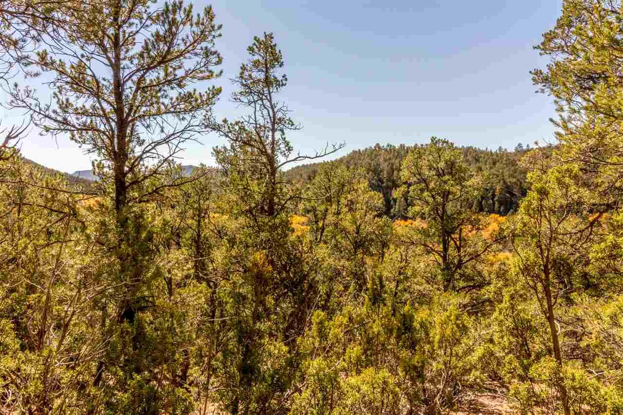 Ranch, Pleasure - Pecos, NM (photo 4)