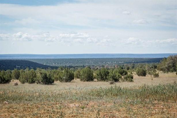 Pueblo, Single Family - Villanueva, NM (photo 3)