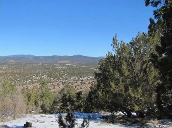 Residential Lot - Ilfeld, NM (photo 5)