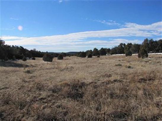 Ranch, Working - Glorieta, NM (photo 3)