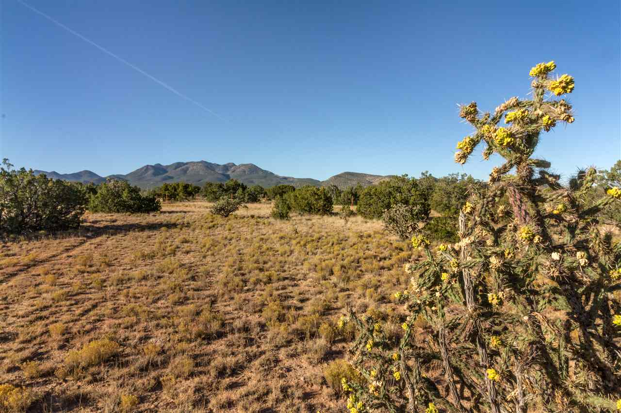 Residential Lot - Cerrillos, NM (photo 2)