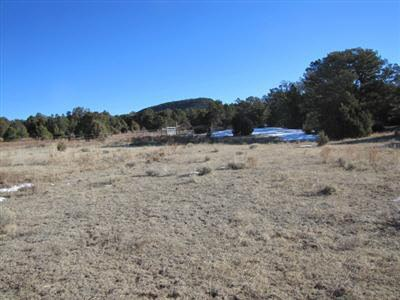 Residential Lot - Glorieta, NM (photo 4)