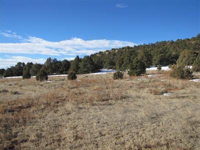Residential Lot - Glorieta, NM (photo 5)