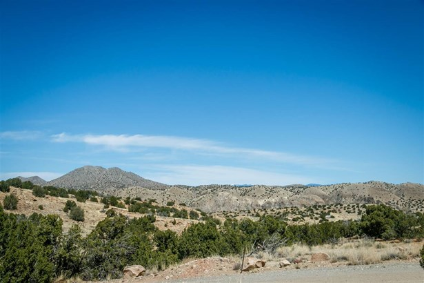 Undeveloped - Cerrillos, NM (photo 3)