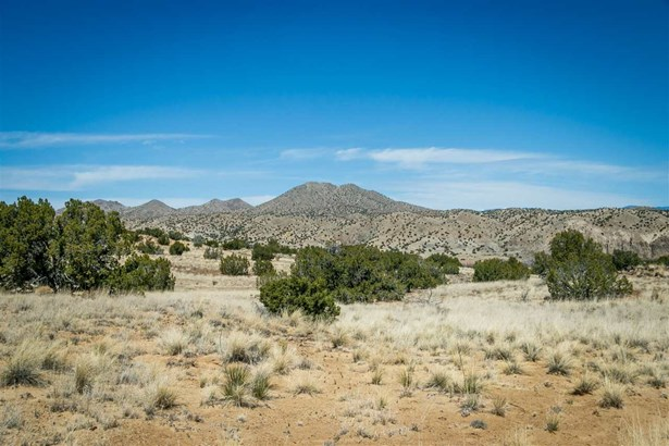 Undeveloped - Cerrillos, NM (photo 5)