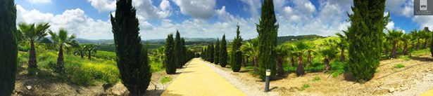 An Immaculate Country Estate for Sale around the prestigious Sotogrande Polo fields (photo 4)