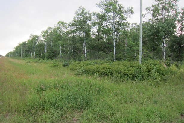 2,3,&4 Richland Road, Anola, MB - CAN (photo 1)