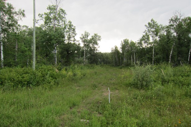 2,3,&4 Richland Road, Anola, MB - CAN (photo 2)