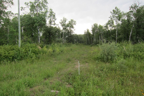 2,3,&4 Richland Road, Anola, MB - CAN (photo 3)