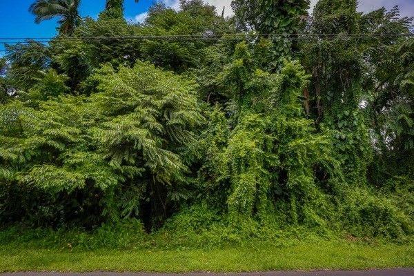 276 Kaiulani St 3, Hilo, HI - USA (photo 1)